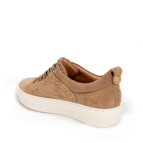 AGL Suede Sneaker with Gold Studds Pumpz
