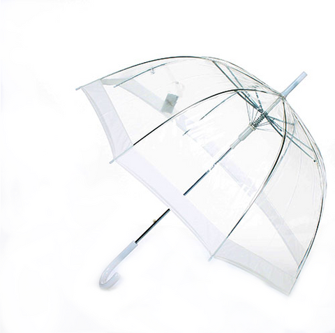 Clear Dome-Shaped Umbrella