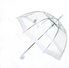 Image of Clear Dome-Shaped Umbrella