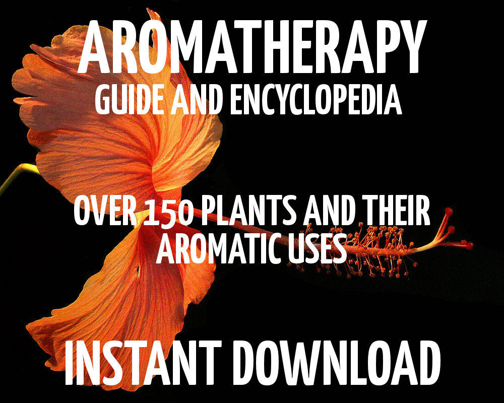 Load image into Gallery viewer, Aromatherapy Guide & Encyclopedia