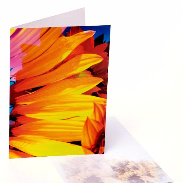 Greeting Cards / Sunflowers 1