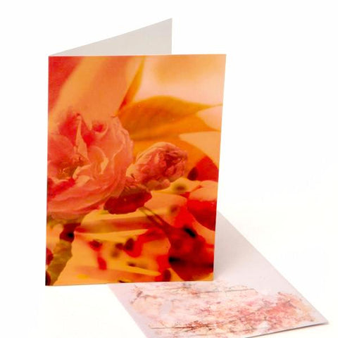 Greeting Cards/ Cherry Blossom 4