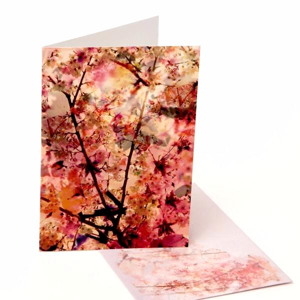 Greeting Cards / Cherry Blossom 7