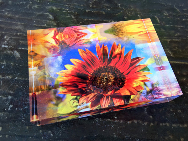 Free Standing - Sunflower Peach Apricot Sonnet Rectangle