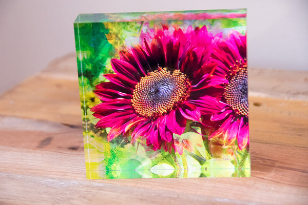 Free Standing - Sunflower Lime Mauve Spray Square