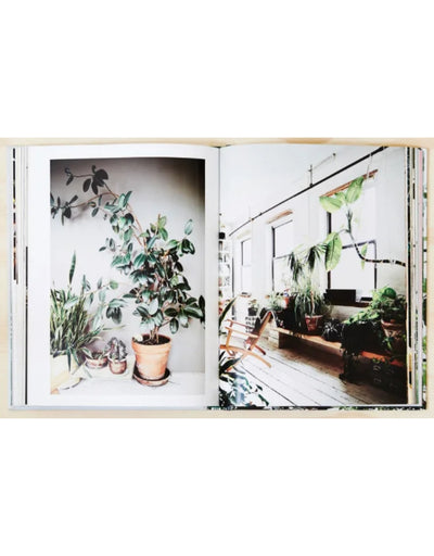 Indoor Green: Living With Plants, Book, Brumby Sunstate - Say It Sister