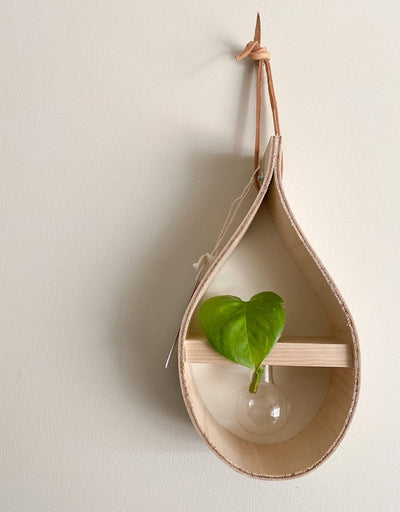 Stix & Flora - Mini Teardrop Vase - Say It Sister