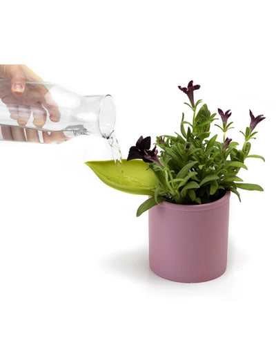 Leaflow Pot Watering Funnel - Say It Sister