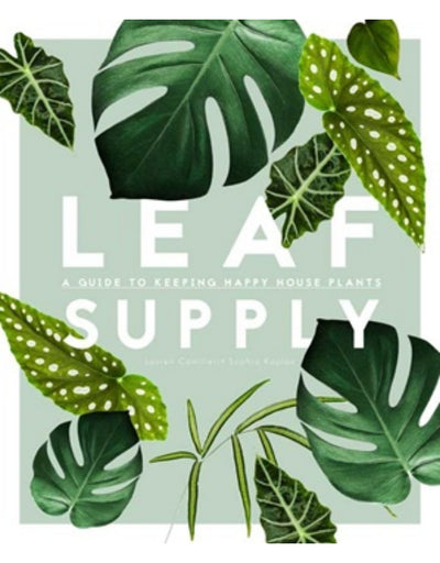 Leaf Supply, Book, brumby sunstate - Say It Sister