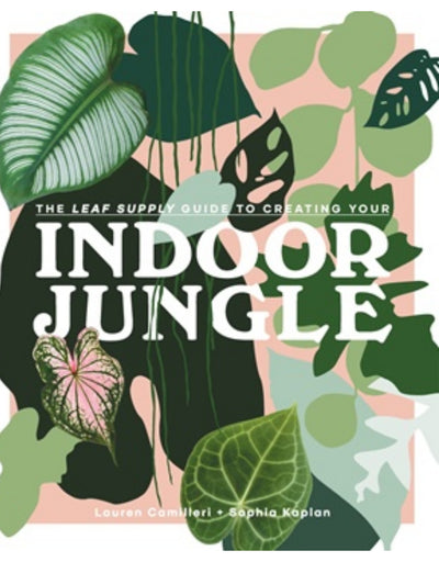 The Leaf Supply Guide to Creating Your Indoor Jungle - Say It Sister