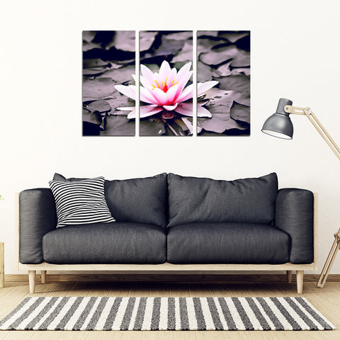 Water Lily 3 Piece Framed Canvas