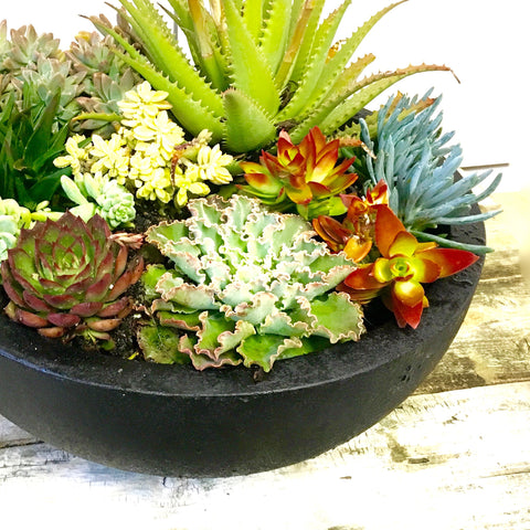 Large Outdoor Bowl (Black)