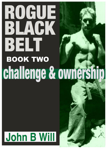 Rogue Black Belt: Book 2 : Challenge and Ownership