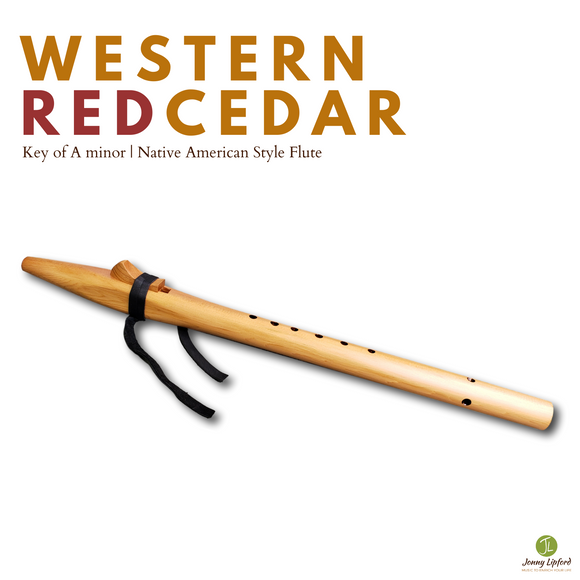 Western Red Cedar Native American Style Flute [A minor]