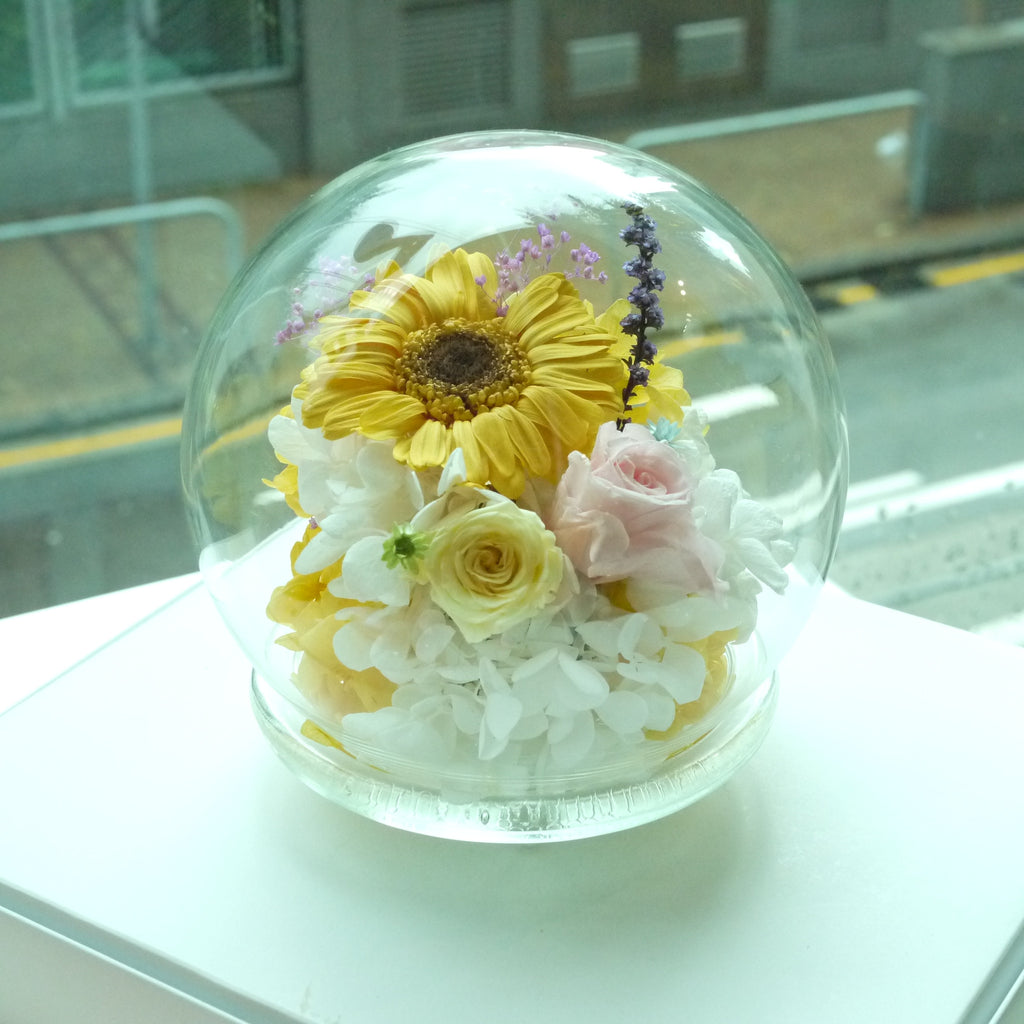 太陽花園水晶球保鮮花 Boule de Cristal Crystal Ball Sun Flower Preserved Flowers