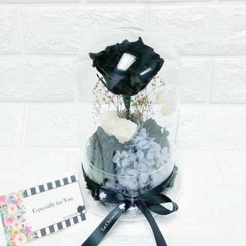 Classic Black Rose Preserved Flowers