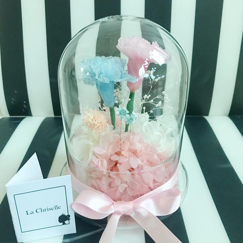 preserved flowers carnation