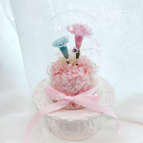 15cm 溫馨康乃馨 保鮮花 母親節 限量版  (Limited edition) Mother's day preserved flower carnation in pink