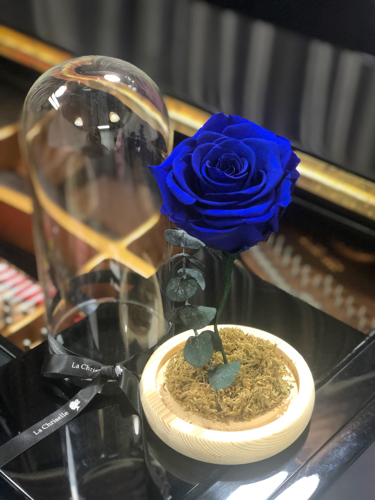 藍版美女與野獸之玫瑰 Beauty and the Beast Preserved Navy Rose Flower