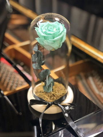 青綠色美女與野獸之保鮮玫瑰花 Light green Beauty and the Beast Preserved Rose Flower