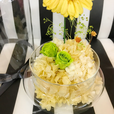 太陽花保鮮花禮 Sun Flower Preserved Flowers