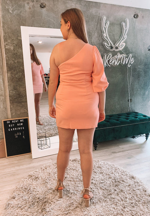 Zena Dress - Pink Clothing Chancery