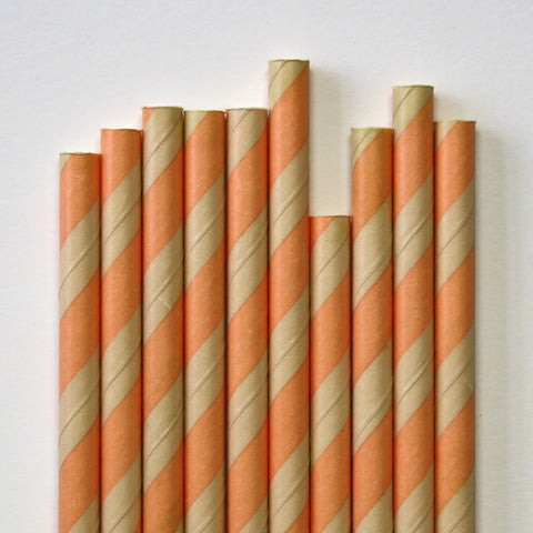 Peach & Kraft Stripe Paper Straws