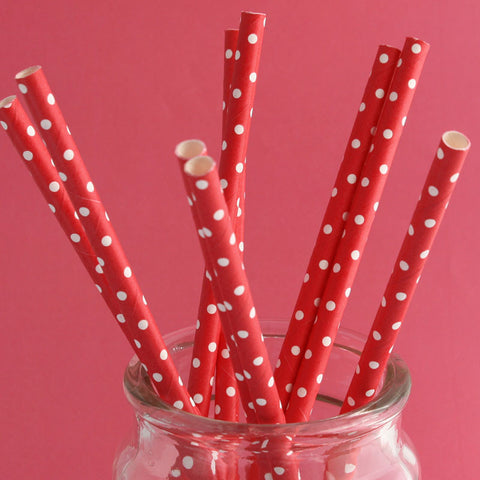 Mini Dot Red Paper Straws