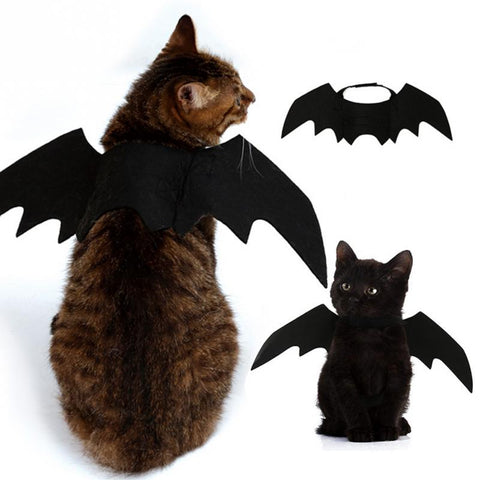 bat wings halloweencostume