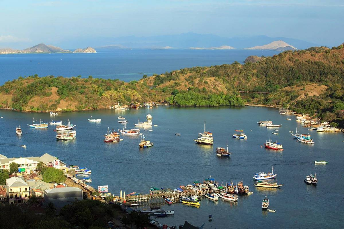 9 Reasons to Visit Komodo National Park