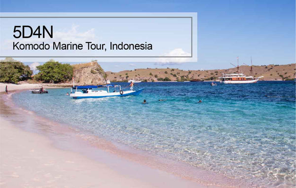 5D4N Komodo Marine Tour, Indonesia