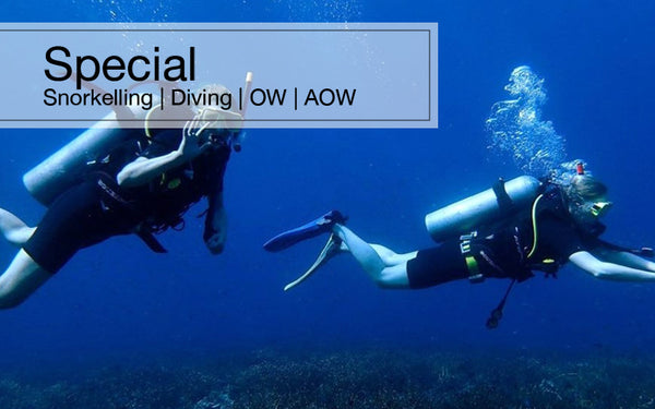 [National Day Special] Tioman Aman Snorkelling / Diving / OW /AOW package