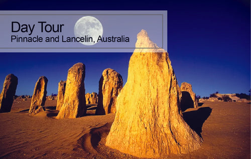 DAY Tour Pinnacles and Lancelin, Australia