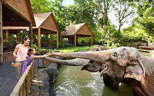 cheap-singapore-zoo-tickets