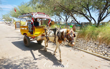 Gili_Tour_Package_Indonesia