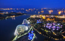 Marina Bay Sands Skypark (MBS Pick Up)