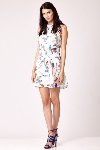 Cutie Bird Print Dress