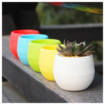Small Succulent Planter Colorful Plastic Plant Flower Pots Set of 5, Mixed E4X6