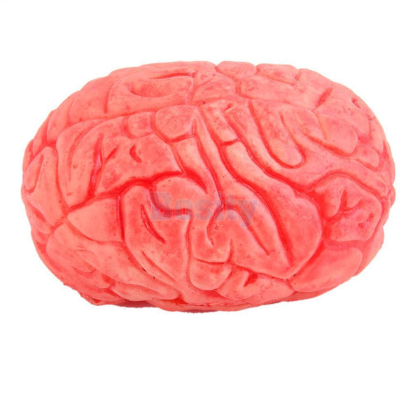 Scary Haunted House HUMAN BRAIN Organ Body Part Halloween Horror Decor