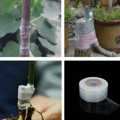 3cm*120m Self-adhesive Fruit Tree Grafte Stretchable Tape Garden Plants Tools OZ