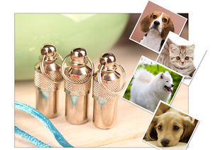 Sales Innovative Pet Dog Cat Puppy ID Anti Lost Name Address Tag Collar Pendants