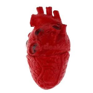 Alcoa Prime Scary Haunted House HUMAN HEART Organ Body Part Halloween Horror Prop Decor
