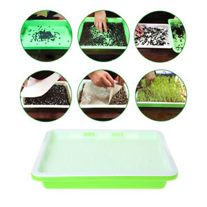 Alcoa Prime Hydroponics Seedling Tray Sprout Plate Hydroponics System Nursery Pots Tray Hot