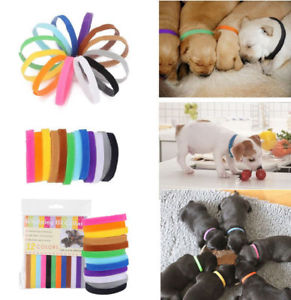 Alcoa Prime 12Pcs Reusable Band Newborn Adjustable Cute Puppy Dog ID Collar Strap Whelping