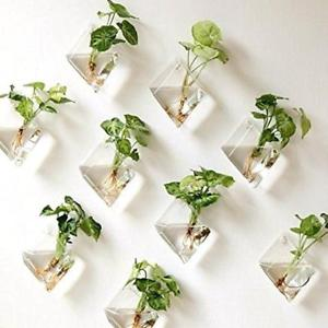 Clear Natural Wall Hanging Plant Terrarium Glass Planter Diamond Baskets Pots