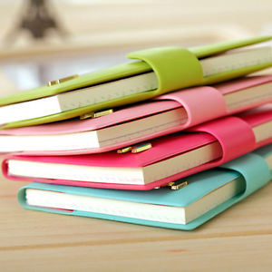 high quality pure light color classic my DIY diary spiral journal gift hot sell