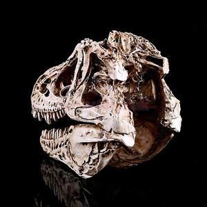 Alcoa Prime 1/10 Scale Dinosaur Skull Tyrannosaurus Head Skeleton Aquarium Decor White