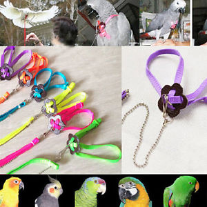Parrot Adjustable Bird Harness and Leash Anti-bite Multicolor Light Soft US91