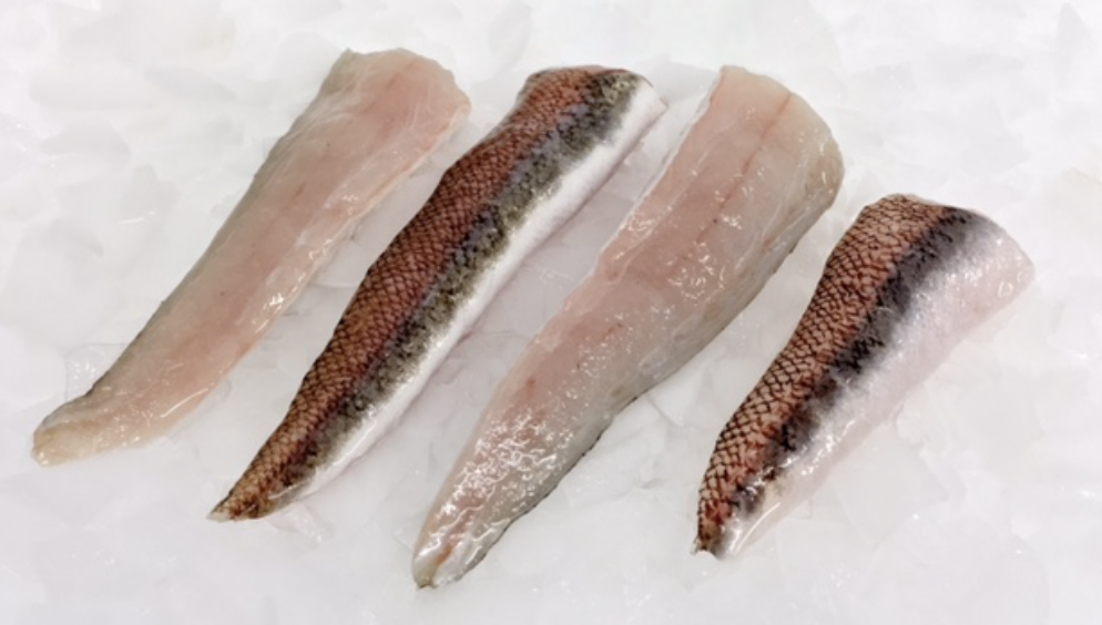Gold Band Snapper Fillets Skin On 240g+ - Noosa Seafood - Wild Caught - The Fishwives Singapore