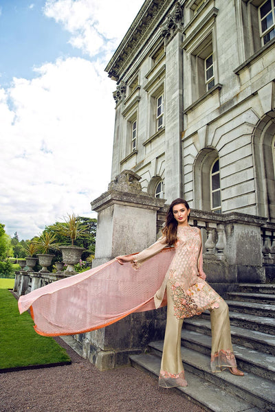 CHIFFON COLLECTION 2016
